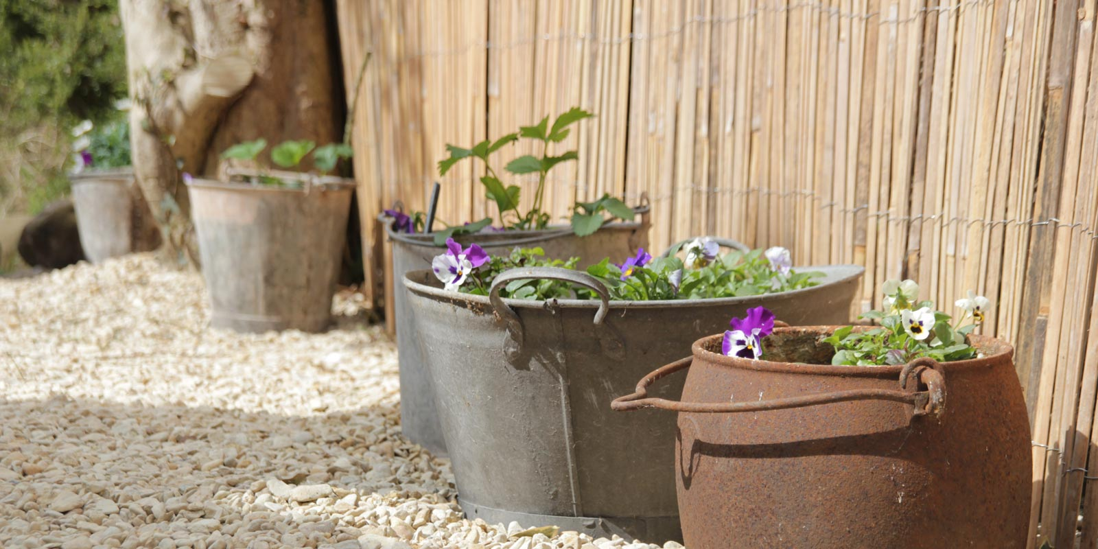 Reclaimed pots used for flowers in the garden