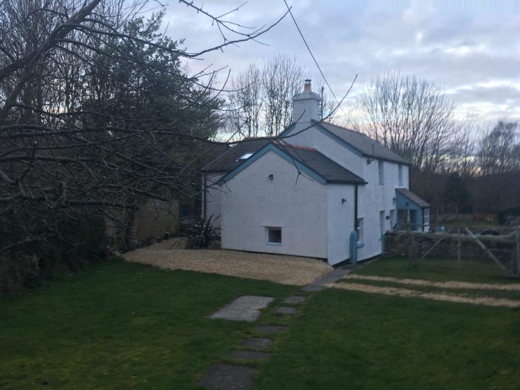 Winter light in the cottage garden
